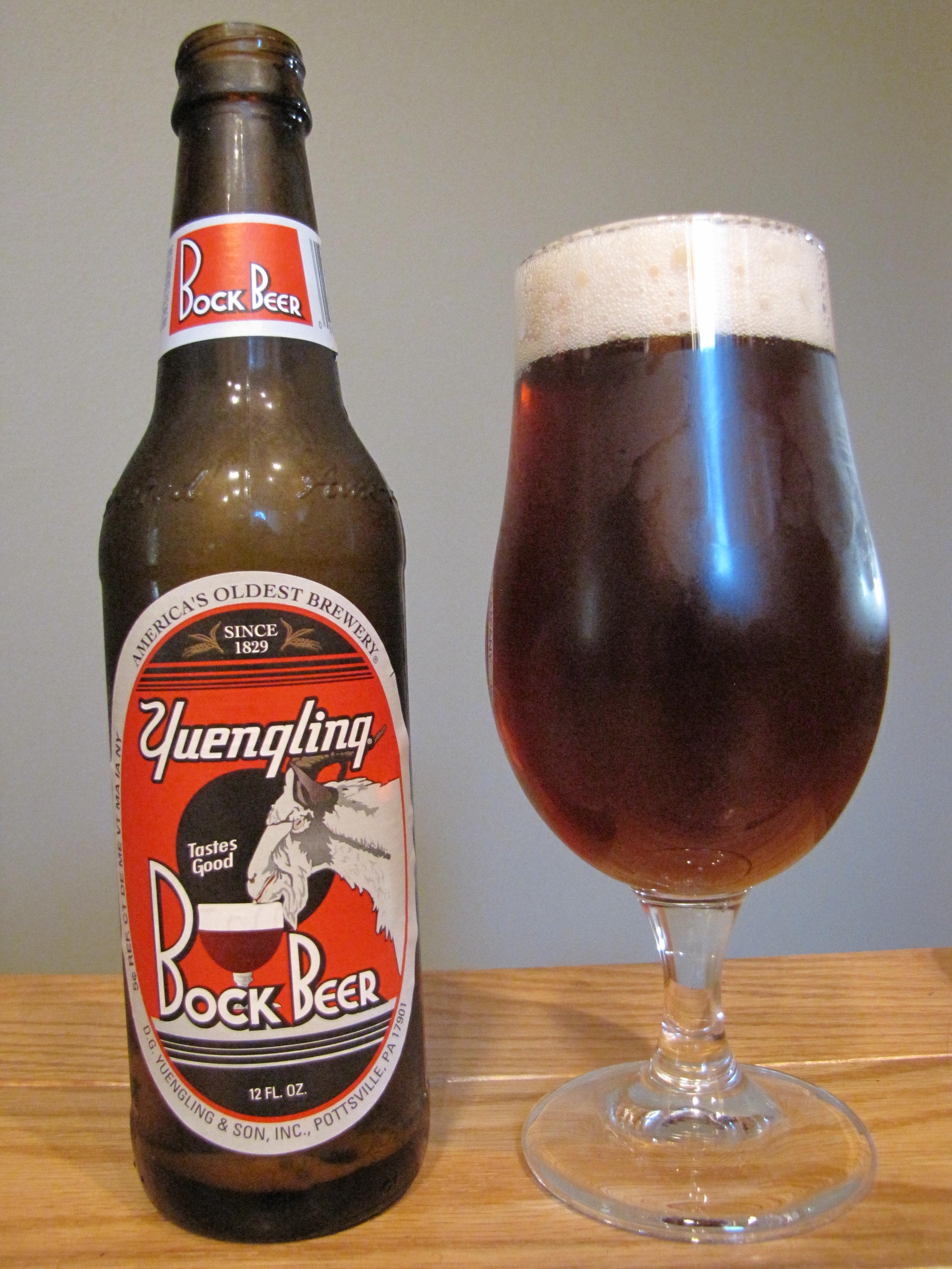 Yuengling Bock