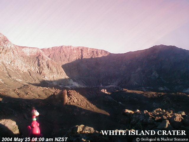Dino on White Island