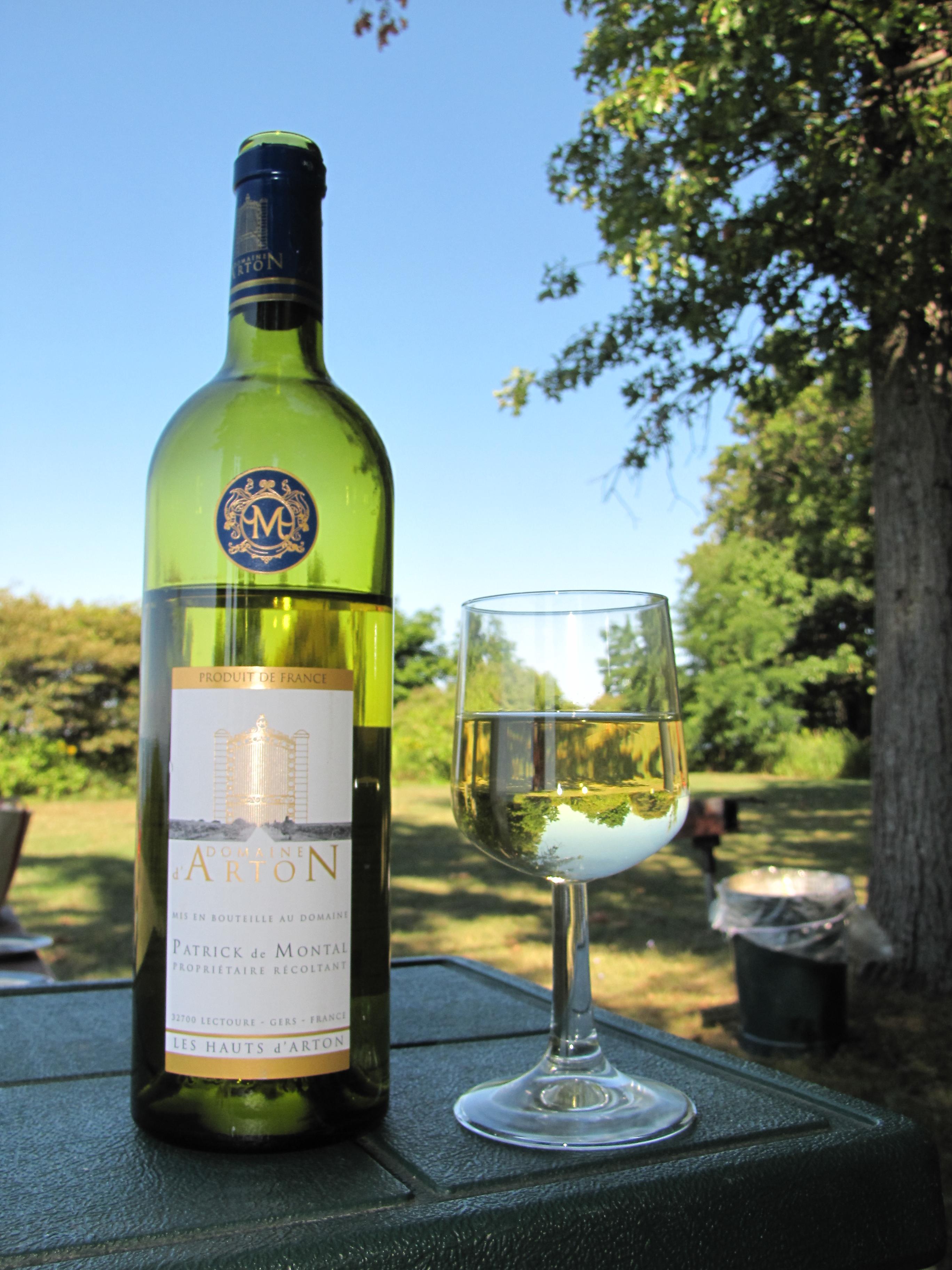 Domaine D'Arton Vin de Pays des Côtes de Gascogne (2009)